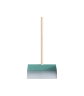Dustpan and handle mint